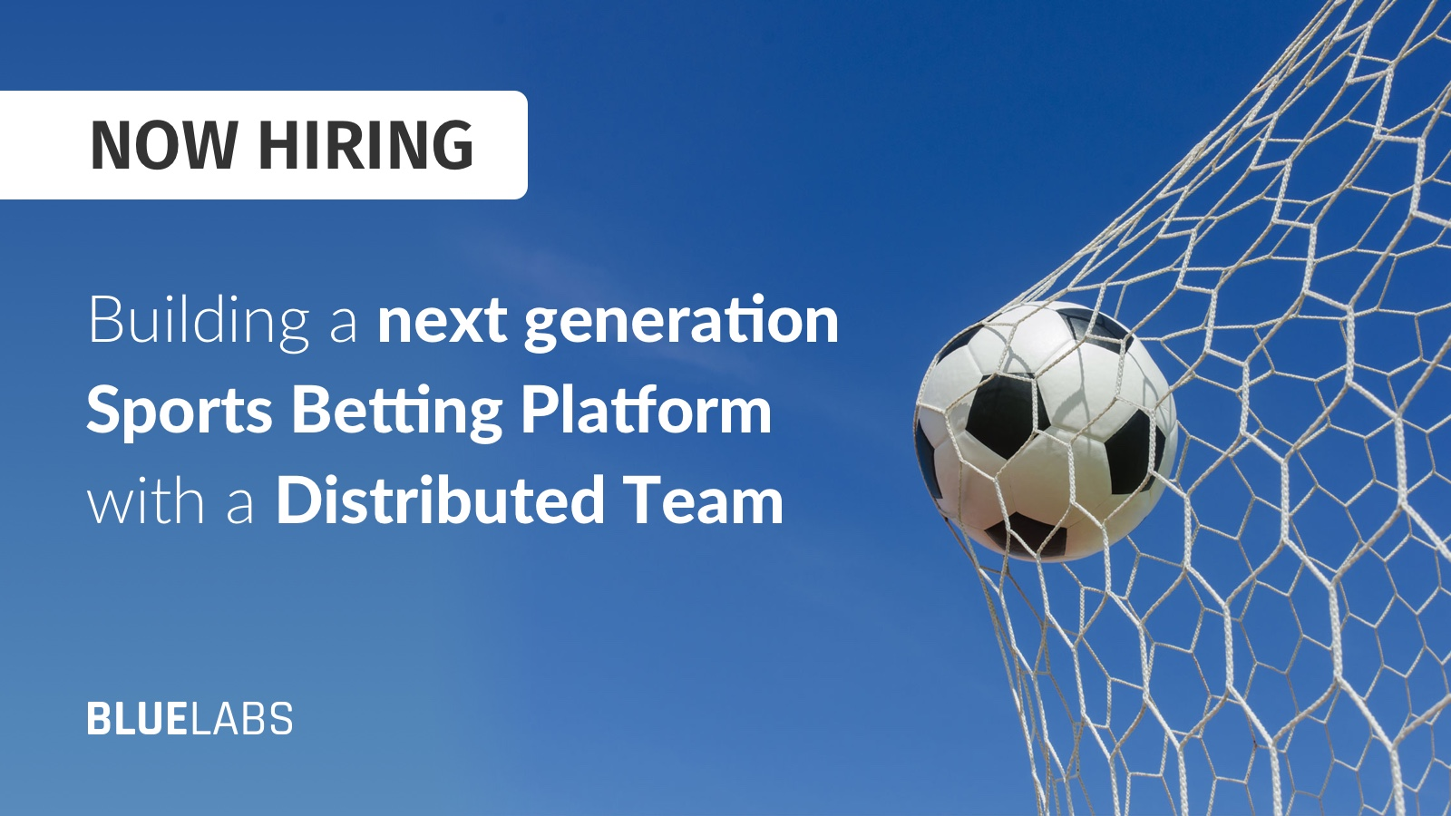 Sports betting startup companies sports betting regulations canada